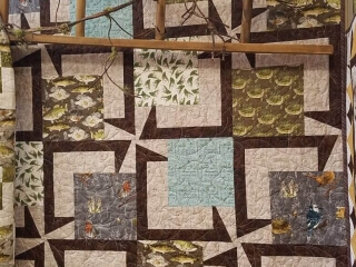 """Quilt Haven on Main used BQ5 for the Minnesota Shop Hop fabric line. A wonderful way to feature a collection. 20 – 13 ½"""" blocks 54"""" x 67.5"""". www.quilthavenonmain.com"""
